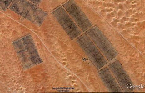 صورة جوية للغابات في وسط الصحراء بإمارة أبوظبي