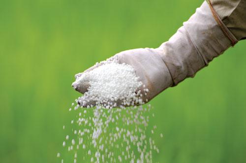 المخصّبات الزراعية.. الآثار السامة وكيفية التعامل مع حالات التسمّم وتجنّبها