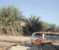 بلدية ابوظبي 2