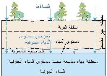 بلدية ابوظبي 3